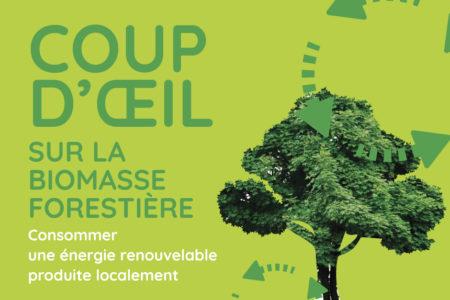 Conférence gratuite – Coup d'œil sur la biomasse forestière